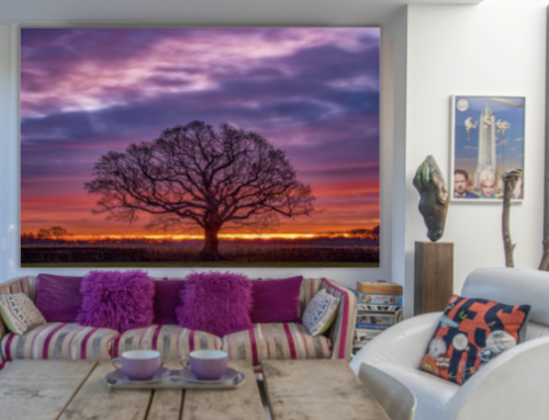 PHOTOGRAPHER ADRIAN HOUSTON LAUNCHES BESPOKE MURAL COLLECTION